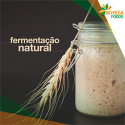 fermentacao natural